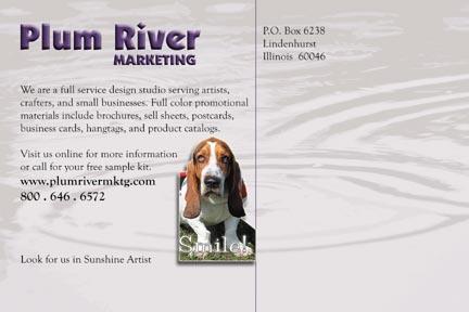 Custom Postcard Design Samples by Plum River Marketing